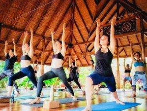22 Days Alchemy of Yoga 200-Hour Teacher Training in Ubud, Bali