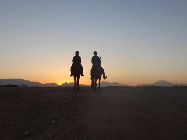 8 Days Sun Dance Festival and Horse Riding Holiday in Pharaoh Trails, Egypt