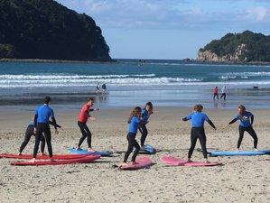 4 Days Intensive Surf Camp in New Zealand