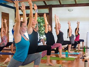 29 Days 300-Hour Immersing Yoga Teacher Training in Puerto Jimenez, Costa Rica