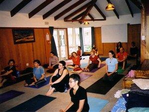 3 Days Weekend Yoga Retreat in Otaki, New Zealand