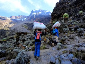 9 Days Mount Kilimanjaro Climbing  Machame Route in Tanzania