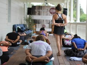 6 Day Spring Cleanse, Yoga and Meditation Holiday in Delaware County, New York