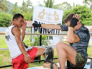 15 Days Amazing Muay Thai Camp in Koh Samui, Thailand