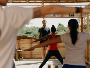 14 Days Mindfulness Meditation and Yoga Retreat in Colombia