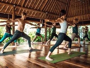 28 Days 300-Hour Yoga Teacher Training and Holistic Business Fundamentals in Bali