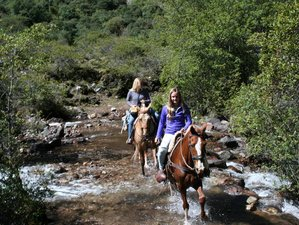 3 Day Mountain Horse Riding Tour for Experienced Riders in Cusco Region