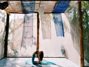 7 Day Harmonize Body, Mind, and Soul Yoga Retreat in Tulum, Quintana Roo