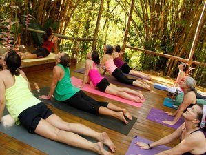 14 Days Ayurveda Healing and Yoga Retreat in India