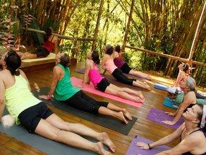 14 Tage Ayurveda Heilung und Yoga Urlaub in Indien
