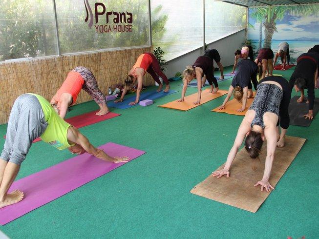 200h de formation de professeur de yoga avec Gokul Yoga à Crikvenica, Croatie