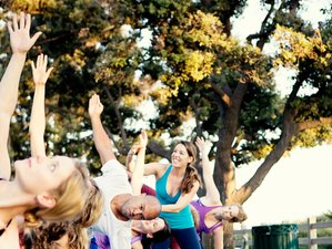 4 Days Wine, Chocolate, and Yoga Retreat in California