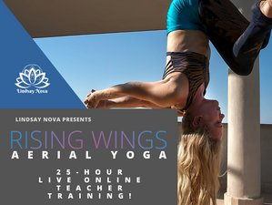 3 Day 25-Hour Rising Wings Aerial Yoga Online Continuing Education Teacher Training