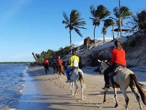 2 Day Extreme Horse Riding Holiday in Lençóis Maranhenses National Park, Maranhão