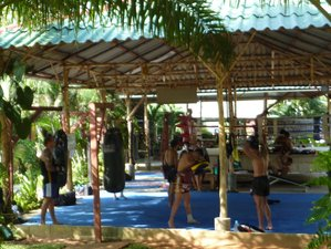1 Month Authentic Muay Thai Training in Thailand