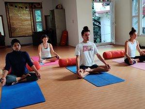 6 Day Iyengar Yoga Training Course with Pranayama in Rishikesh, Uttarakhand