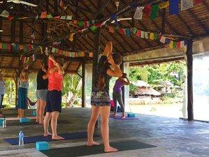 8 días retiro de yoga viviendo saludable en Ko Phangan, Tailandia
