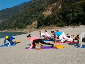 9 Day Trekking and Yoga in the Himalayas, India