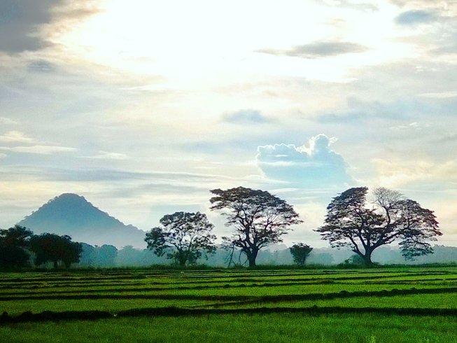 3 días retiro de yoga, Reiki y meditación en Buttala, Sri Lanka