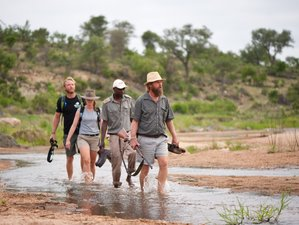 5 Day Makumu Private Game Lodge Safari in Klaserie Private Nature Reserve