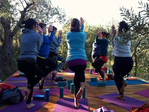 7 Days Martial Arts and Yoga Retreat in Spain