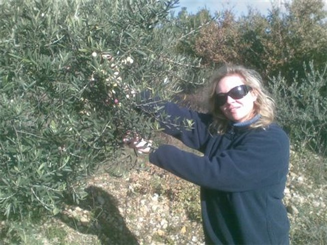 2 Days Olive Harvest Culinary Vacations in Provence