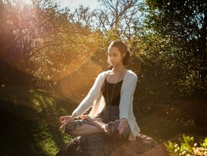 2 Day Online Pranayama, Meditation, and Yoga Retreat Over Zoom