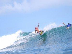 5 Days Ideal Surf Camp in Bocas del Toro, Panama