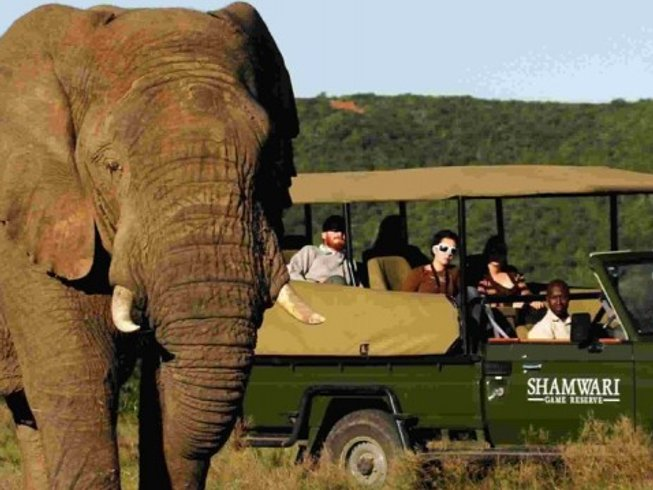 8 Days Singles Big Five Safari South Africa