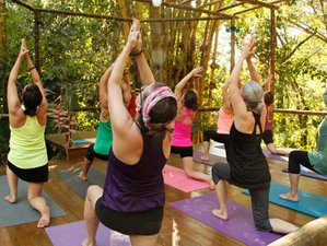 6 Day Juice Detox Retreat with Yoga Sessions in Dominical, Puntarenas