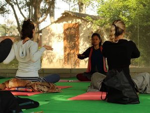 14 Days 100-Hours Meditation Teacher Training in Rishikesh, India