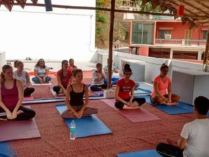 28 Days 200-Hour Therapy Yoga Teacher Training in Rishikesh, India