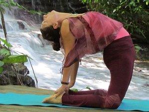 7 jours de cuisine crue, detox et retraite de yoga, Costa Rica
