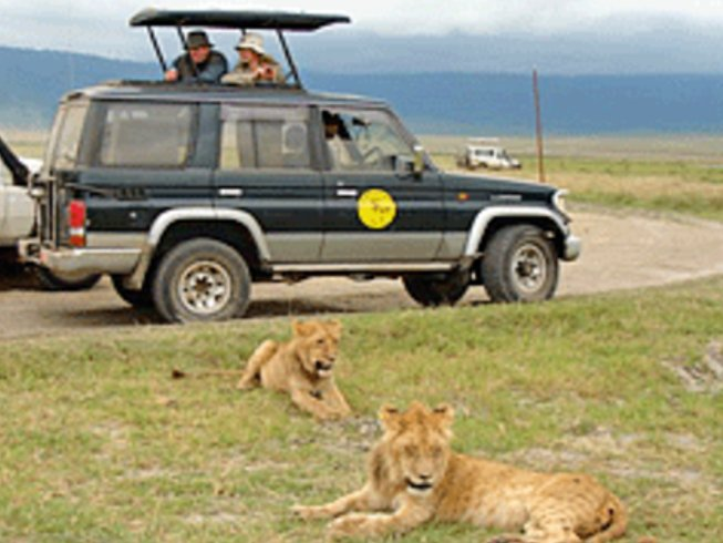 12 Days Best of Tanzania Safari