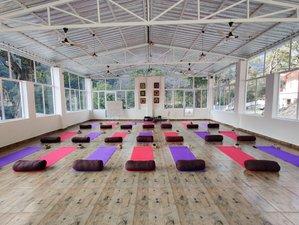21 Day 200-Hour Hatha & Ashtanga Yoga Teacher Training Course in Adhiroha, Rishikesh