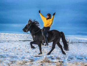 2 Day Winter Getaway with horseback riding in Hella, Iceland
