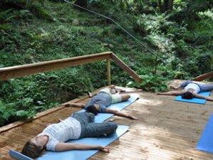 3 Days Detox Yoga Retreat in France