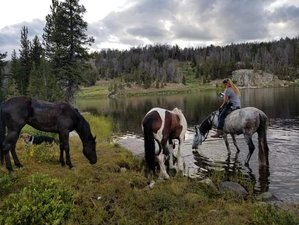2 Day Horseback Riding Pack Trip in the Bridger-Teton Wilderness, Pinedale, Wyoming
