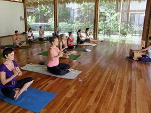 7 Day Surf Camp and Yoga Holiday with Pura Vida Surfers in Santa Teresa, Puntarenas Province