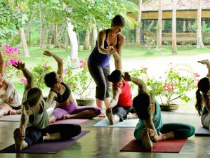 8 Day Yoga and Surf Camp in Arugam Bay, Eastern Province