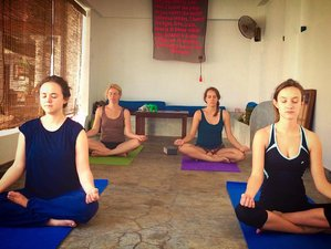 8 Days Rejuvenating Surf and Yoga Retreat Sri Lanka