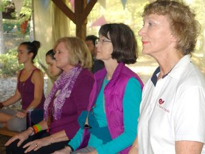 9 Days Autumn Stillpointe Meditation Retreat in Virginia, USA