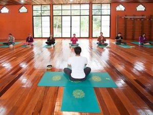 22 Days 200-Hour Yoga Teacher Training in Chiang Rai, Thailand