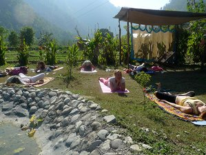 8 Day Yoga in Nature, Meditation and Ayurveda Retreat in Tapovan, Rishikesh