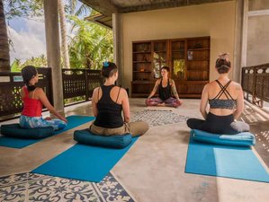 7 Tage bereichernder Yoga Retreat in Ubud, Bali