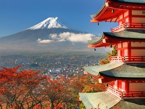 10 Days Yoga Retreat in Japan