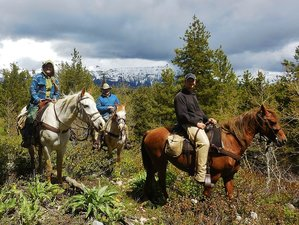 4 Days Horse Riding Holiday in Wyoming, USA
