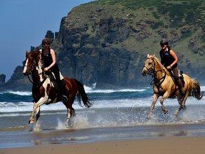 8 Day Glorious Kei River Horse Trail Riding Adventure in Kei Mouth, Wild Coast