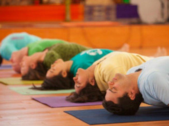 3 jours en stage de yoga relaxant et déstressant en Californie, États-Unis