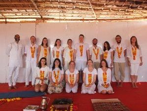 26 días profesorado de yoga multiestilo de 200 horas en Rishikesh, India